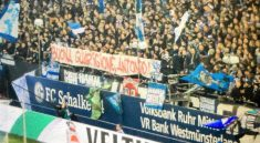schalke 04 salernitana